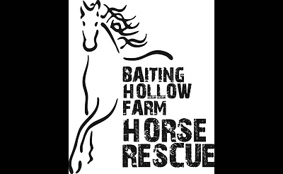 The Mane Event at Baiting Hollow Farm Horse Rescue
