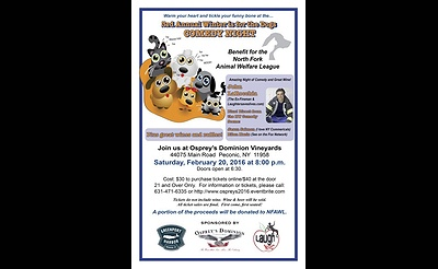 3rd Annual Winter is for the Dogs Comedy Night