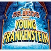 Young Frankenstein: The N
