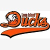 Long Island Ducks vs. New