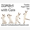 Zumba with Cats at A Kitt
