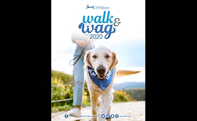 Virtual Walk and Wag