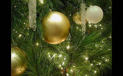 Christmas Eve Shows R Long Island 2020 Long Island Events | Things to Do | Plan Your Day
